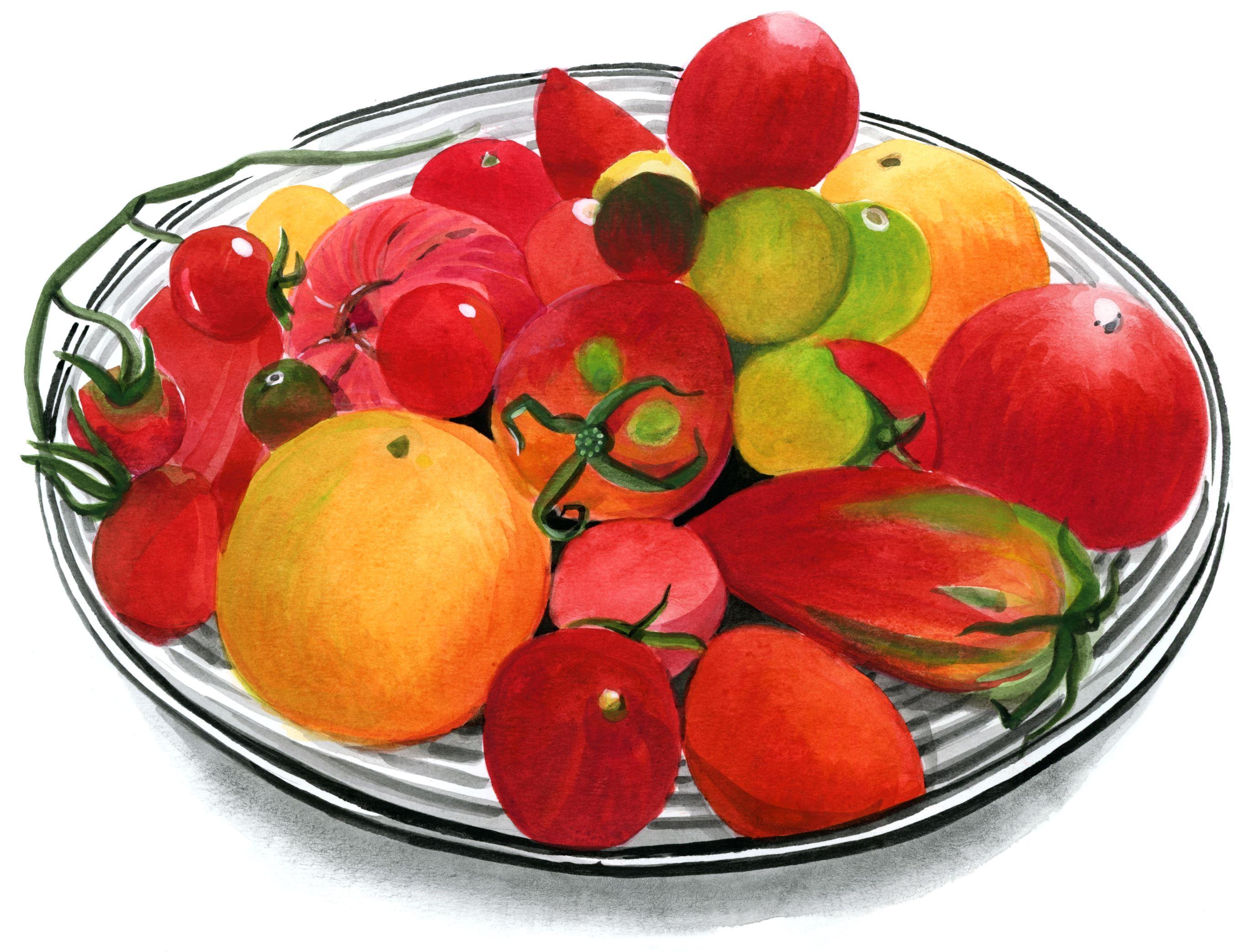 tomatenschale-vielfalt